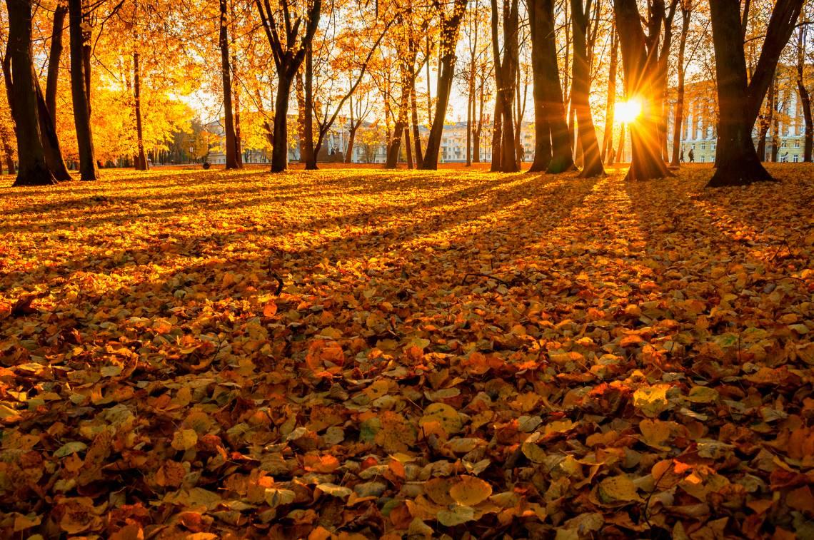 Tips für den Herbst und Winter